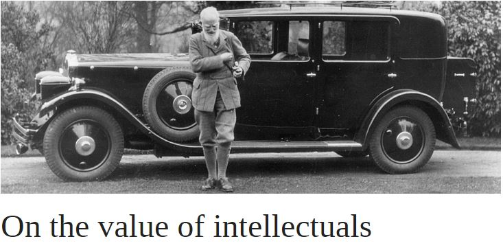 On the value of intellectuals