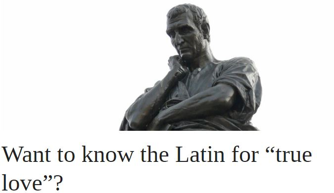 "Want to know the Latin for ""true love""? 